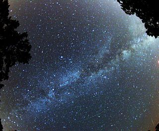 Black sky with a wide diagonal streak of bright blue stars, partially hidden by a silhouetted tree