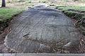 Petróglifo. Laxe dos carballos. Parque arqueolóxico de Campo Lameiro CL08.jpg