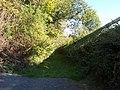 Pfad an den Schienen - panoramio.jpg
