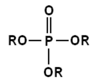 Phosphoric acids and phosphates - General Chemical Structure of an ortho- (or mono-) phosphate ester. Here any R can be H or some other organic radical