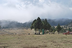 Piedras Encimadas Valley - View of the area near the entrance with fog