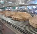 Pita bread on conveyor belt.jpg