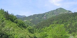 Čvrsnica - Image: Planina Čvrsnica, pogled sa ceste uz Neretvu 20070603 114