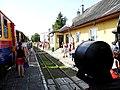 Pociąg do Ponidzia, Jędrzejów-Pińczów-Umianowice-Pińczów-Jędrzejów - panoramio.jpg