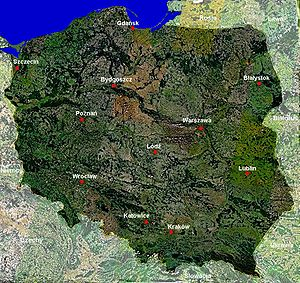 Satelitarna mapa Polski