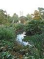 Pond in Oxford Botanic Garden - geograph.org.uk - 247322.jpg