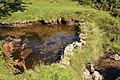 Pool on East Webburn River - geograph.org.uk - 1480116.jpg