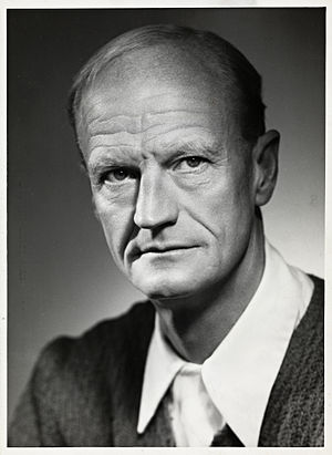 Johan Borgen - Johan Borgen
