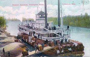 Columbus, Mississippi - Postcard of steamer American on Tombigbee River at Columbus, c. 1890-1920