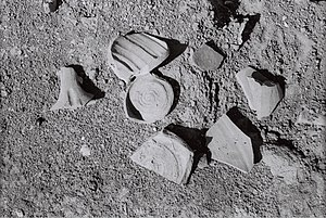 Atil - Image: Potsherds (close up) Atil 2014