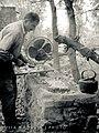 Preparing a Mid Day Meal, Alamut Valley, Iran (10059124704).jpg