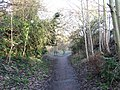 Public Footpath, Tring - geograph.org.uk - 1602760.jpg