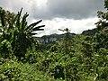 Puerto Princesa, Palawan, Philippines - panoramio (6).jpg