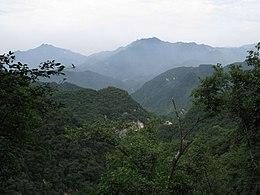 Qin Mountains Foreste decidue dei mo...