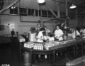 Queensland State Archives 1824 Milk pasteurising equipment Peters and Pauls factories Brisbane December 1953.png