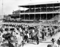 Queensland State Archives 5505 Grand parade of livestock at the Royal National Show Brisbane c 1958.png