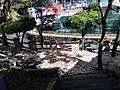 Río Orizaba en Veracruz 03.jpg