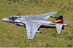 RAF British Aerospace Harrier GR9 Lofting-2.jpg