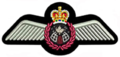 RCAF-Astronaut-Wings.png