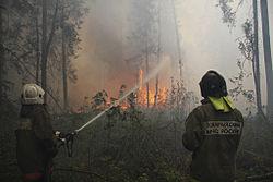 RIAN archive 736941 Firemen smother fire in Orekhovo-Zuyevo, Moscow region.jpg