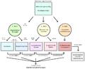 RLS-Behandlungsschema.png