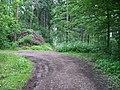 Radotín, lesní cesta (01).jpg
