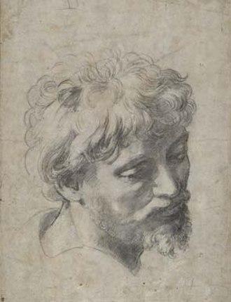 Transfiguration (Raphael) - An auxiliary cartoon for the apostle far left