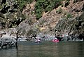 Raft riding Rogue River Wild & Scenic River, Rogue River-Siskiyou National Forest (35529923393).jpg