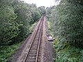 Railway in Crannach wood - geograph.org.uk - 57063.jpg