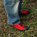 Red Shoes (4533785330).jpg