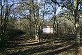 Rede Wood, Henley - geograph.org.uk - 290363.jpg
