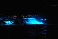 Rheinfall Nachtbeleuchtung.jpg
