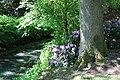 Rhododendronpark Bremen 20090513 140.JPG