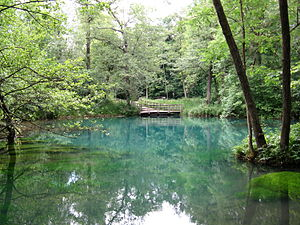 River source - Rhume Spring, source of the Rhume river in Germany.