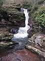 Ricketts Glen State Park Adams Falls 2.jpg