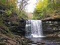 Ricketts Glen State Park Harrison Wright Falls 3.jpg