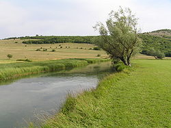 Rijeka Sturba.JPG