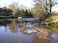 River Camowen, Cranny - geograph.org.uk - 1113025.jpg