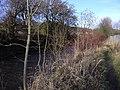 River Irwell at Ewood Bridge - geograph.org.uk - 1124559.jpg