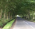 Road to Lathockar - geograph.org.uk - 930661.jpg