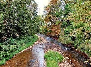 Roan Creek