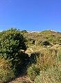 Rock-cornwall-england-tobefree-20150715-165145.jpg