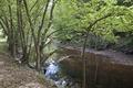 Rock Creek Park, NW, Washington, D.C LCCN2010641467.tif