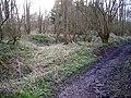 Roman Slag Heap, Beauport Park - geograph.org.uk - 344643.jpg
