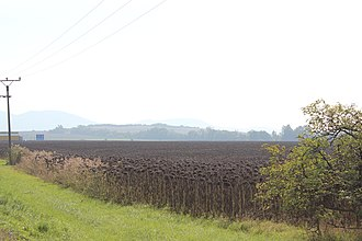 Roman fort, Mušov - The typical landscape silhouette of the fortress - Northern view