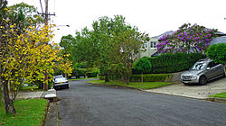 Rosetta Avenue, Killara, New South Wales (2011-04-02)