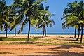 Route en terre battue, cocotier, plage et océan Atlantique.jpg