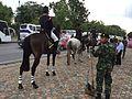 Royal Guards bangkok IMG 7007.JPG