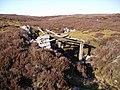Ruin, Grizedale Head - geograph.org.uk - 332238.jpg