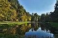 Rybník v údolí potoka Pilavka poblíž Ochozské Kyselky, Budětsko, okres Prostějov.jpg
